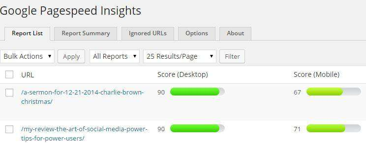 Google-Pagespeed-plugin-Results