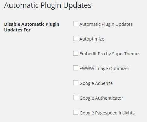 wordpress how to allow automatic updates
